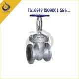 La pompa ad acqua del pezzo fuso del ferro parte la valvola di ritenuta della valvola di pompa