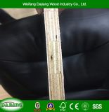 Finger Gasket Core Plywood with Waterproof Film Faced for Construction