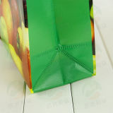 반점 공급 3D를 가진 비 길쌈한 쇼핑 백은 주문을 받아서 만들었다 인쇄 (MY-001)를