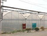 2018 Venda quente cobertura de plástico de polietileno para as flores de estufa