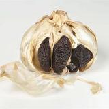 Ensemble de l'ampoule de l'ail noir avec une haute valeur nutritive ensemble de la tête