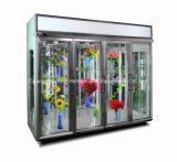 Охладители цветка высокого качества вертикальные с 4 дверями