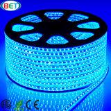 110V/120V/220V/230V SMD3528 LED Weihnachtsbeleuchtung für dekoratives Licht