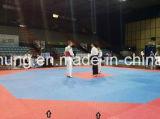 空手またはTaekwondoのための標準八角形の形のマット
