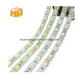 Striscia chiara flessibile della striscia 5050 DC12V 60ledsm 5mlot LED RGB RGBW 5050 LED del LED