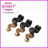 卸し売り工場価格の毛のよこ糸、Omberカラー毛のブラジルの人間の毛髪
