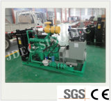 Abroad 30kw 석탄 Fired Power Plant Type Gas Generator.에 수출