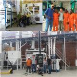 De Installatie van de Verwerking van de Sesam van de boon (5XZC-5X)