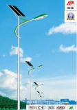 Wbr102 30W Single Lamp Solar LED Street Light
