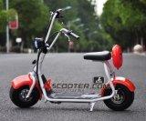 Scooter électrique Harley de type populaire de 2016 avec le scooter Citycoco de ville de mode de grandes roues
