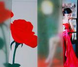 8мм искусства кислоты на спицах зубчатых шкивов Декоративное стекло