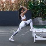 Hohe Taillen-Polyester-Sport-Yoga-Gymnastik-Sport-Gamaschen-Hosen 3037