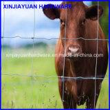 De gegalvaniseerde Omheining van het Gebied van de Wacht van het Landbouwbedrijf/de Omheining van het Landbouwbedrijf voor Dier