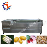 Máquina de lavar vegetal da escova macia da abóbora do tomate da pimenta