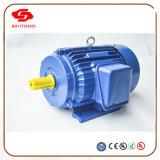 La serie Y2 Motor de inducción trifásico asíncrono