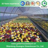 Handelsc$einzeln-überspannung Plastikgewächshaus für Blumen