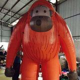 Pubblicità gonfiabile dell'orangutan di alta qualità