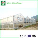 Invernadero de cristal de la PC del invernadero del marco de aluminio con el solo palmo de la estructura de aluminio con la ventilación automática