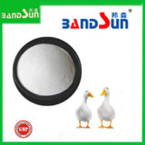 Heißes Sales Veterinary Medicine Powder Florfeniol für Poultry Medicine