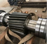 Professioneller niedriger Preis-industrieller hohe Präzisions-Stahlsporn-Gang