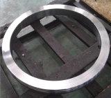 頑丈な砂型で作る造られた転送されたリングのステンレス鋼