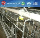 고품질 닭 층 건전지 감금소