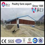 Стальные конструкции фермы бройлерных птицы пролить строительные конструкции цыпленок питателя