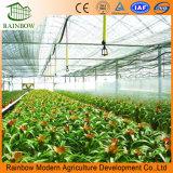 Estufa de Vidro inteligente para produtos hortícolas