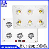 Mayorista de la fábrica de la certificación CE RoHS COB crecer luces LED 900W