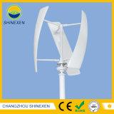 generatore guidato del vento verticale di 500W 12V/24V