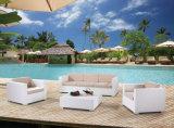 Osier de patio de jardin/sofa de rotin réglé - meubles extérieurs (LN-3025)