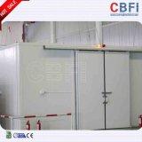 Fábrica de Equipamentos de refrigeração do arrefecedor de ar numa sala fria