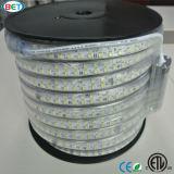 ETL/UL 120V/220V 두 배 줄 RGB LED 지구 빛 LED 리본
