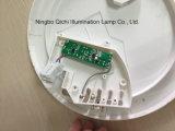 IP54 정연한 천장 빛