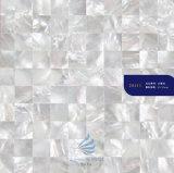 Mosaico madreperlaceo delle coperture di colore naturale di lusso di disegno