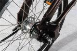 '' Laufwerk-faltendes Fahrrad-Fahrrad der Welle-20 ohne Kette