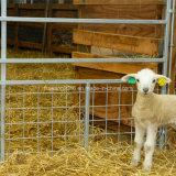 Гальванизированная панель загородки утюга овец малыша строба Овечк-Доказательства портативная