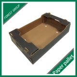 Impresión Offset personalizada Caja de embalaje de fruta corrugada
