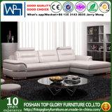 La mobilia di cuoio diVendita del sofà dei piedini del bicromato di potassio (TG-8030)