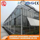 Multi-Überspannung Landwirtschafts-ausgeglichenes Glas-Gewächshaus für Blume