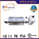 照明設備の/630Wの二重出力CMHバラスト/Gemanアルミニウム反射鏡を育てなさい