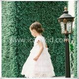 Il capretto lungo del vestito dalle ragazze di fiore di vendite calde copre il vestito da partito per le ragazze