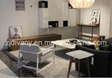 Singolo sofà di stile della casa della mobilia del tessuto moderno del cuoio (D-81)