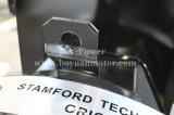 Копировать Стэмфорд постоянного магнита бесщеточный генератор переменного тока генератора динамо 6~200квт