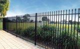 Barriera di sicurezza rivestita della parte superiore del germoglio della polvere per costruzione industriale, commerciale ed industriale