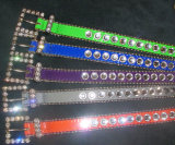 Bb Simon Collar de cachorro de luxo, Crystal Pet Collar