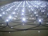 직업적인 LED 순수한 빛 정원 잔디밭 훈장