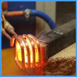 Het Verwarmen van de Inductie van het Lassen van het Metaal van de lage Prijs Solderende Machine (jl-15)