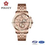 Relógio de ouro de Rosa do aço inoxidável do OEM da fábrica para homens