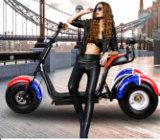 De Elektrische Autoped met drie wielen van de Motorfiets
